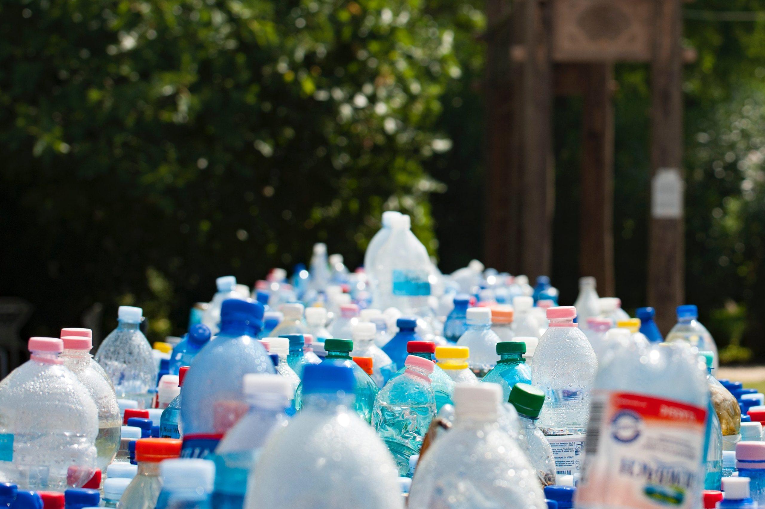 Il costo dello spreco alimentare e come ridurlo